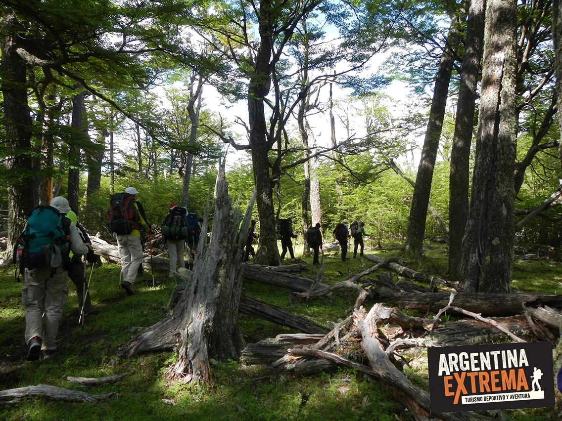 Puesto Bosque Trekking Patagonia