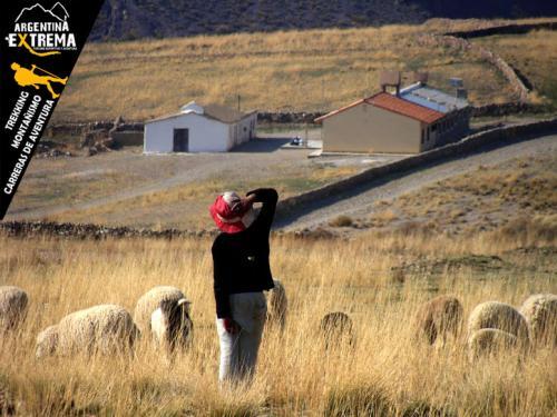 Travesia Vuelta al Nevado de Chani Trekking 08
