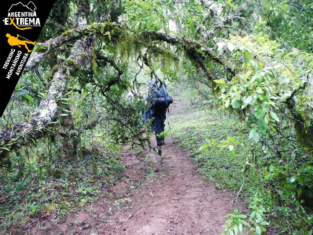 Yunga trekking Tucuman