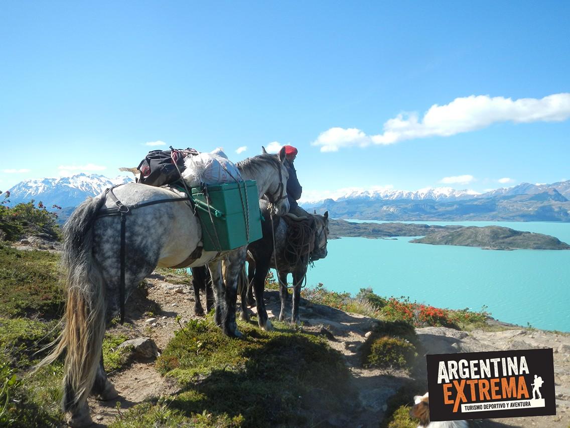 caballos lago san martin porteo