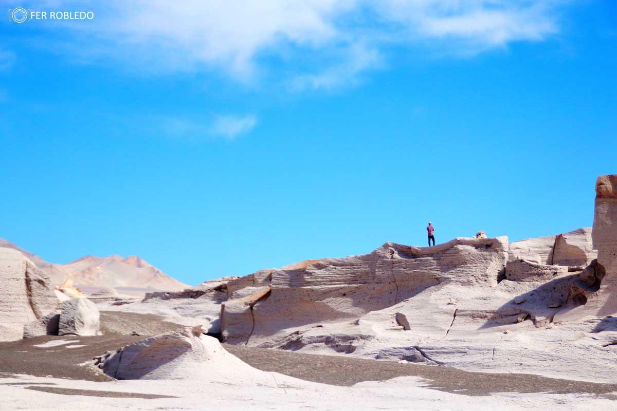 Campo de Piedra Pomez- Puna Catamarqueña