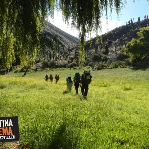 Vuelta, expedición, ascenso y trekking al Nevado de Chañi (5896 msnm) - Selección de varios años y por diferentes rutas