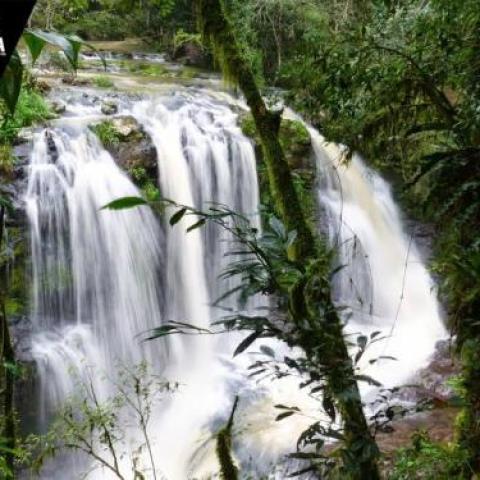multiaventura en reserva yaboti y saltos del mocona junio 01