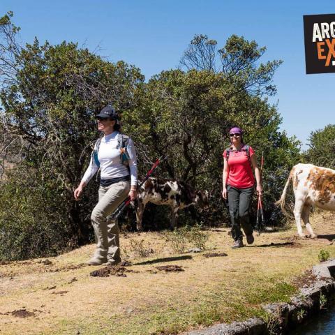 5 dias de aventuras a traves de caminos Incas