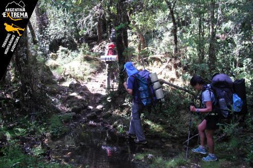 trekking en bosques
