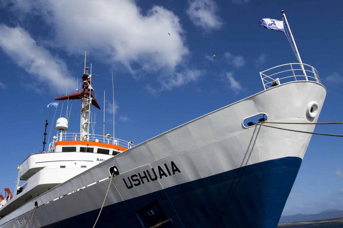 antartida crucero exploracion avistaje 002