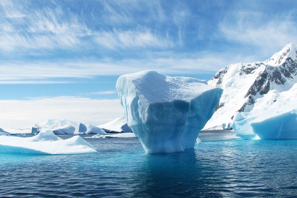 antartida crucero exploracion avistaje 010