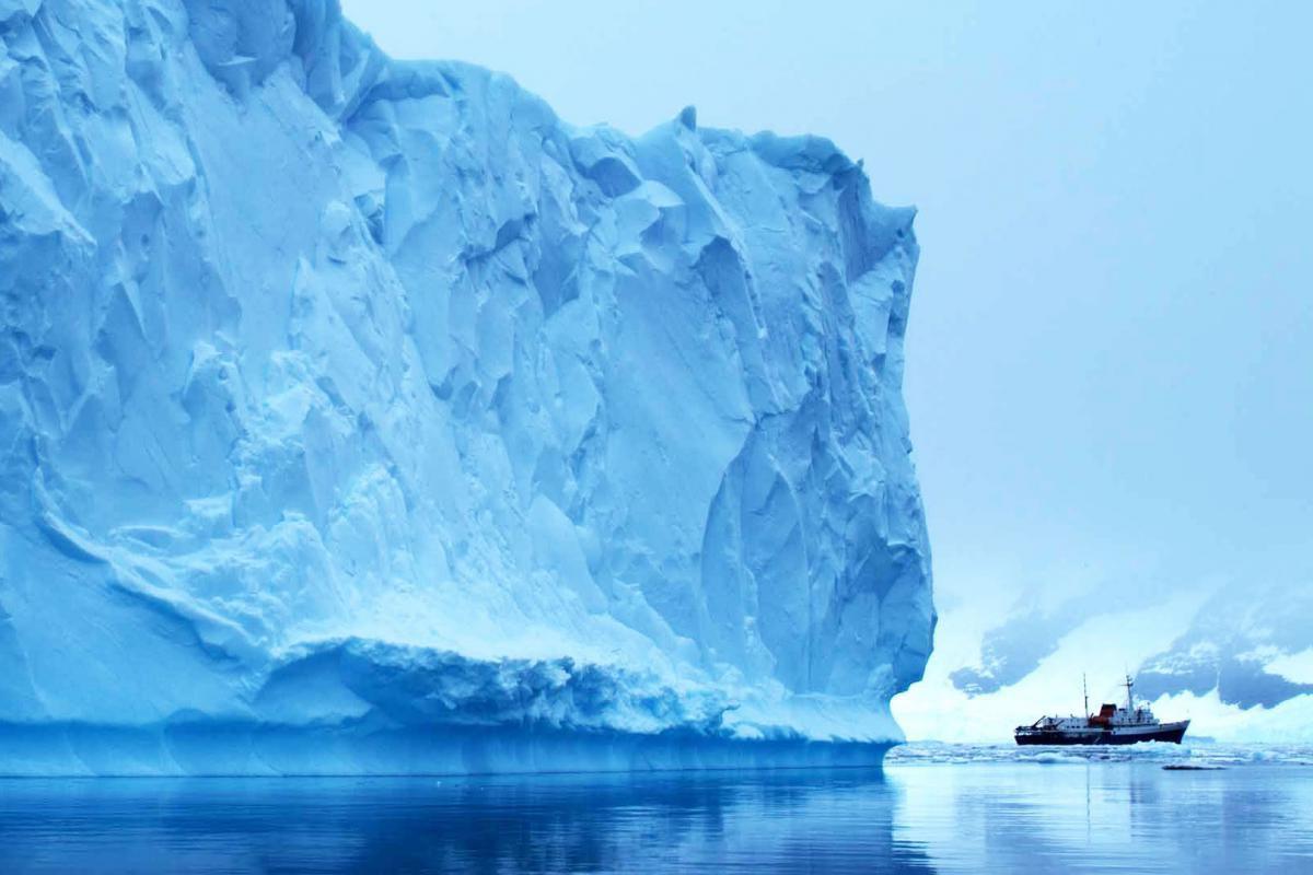 antartida crucero exploracion avistaje 013