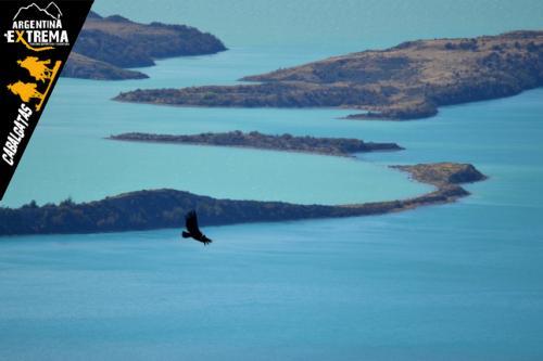 cabalgata confines de la patagonia609