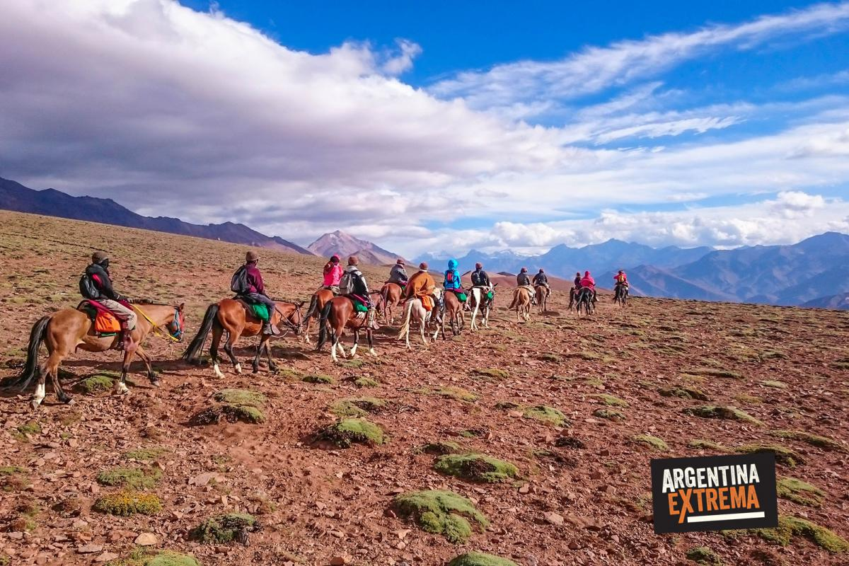 Caballos y mulas enfrentan el sueño del General San Martin - Cruzar los Andes