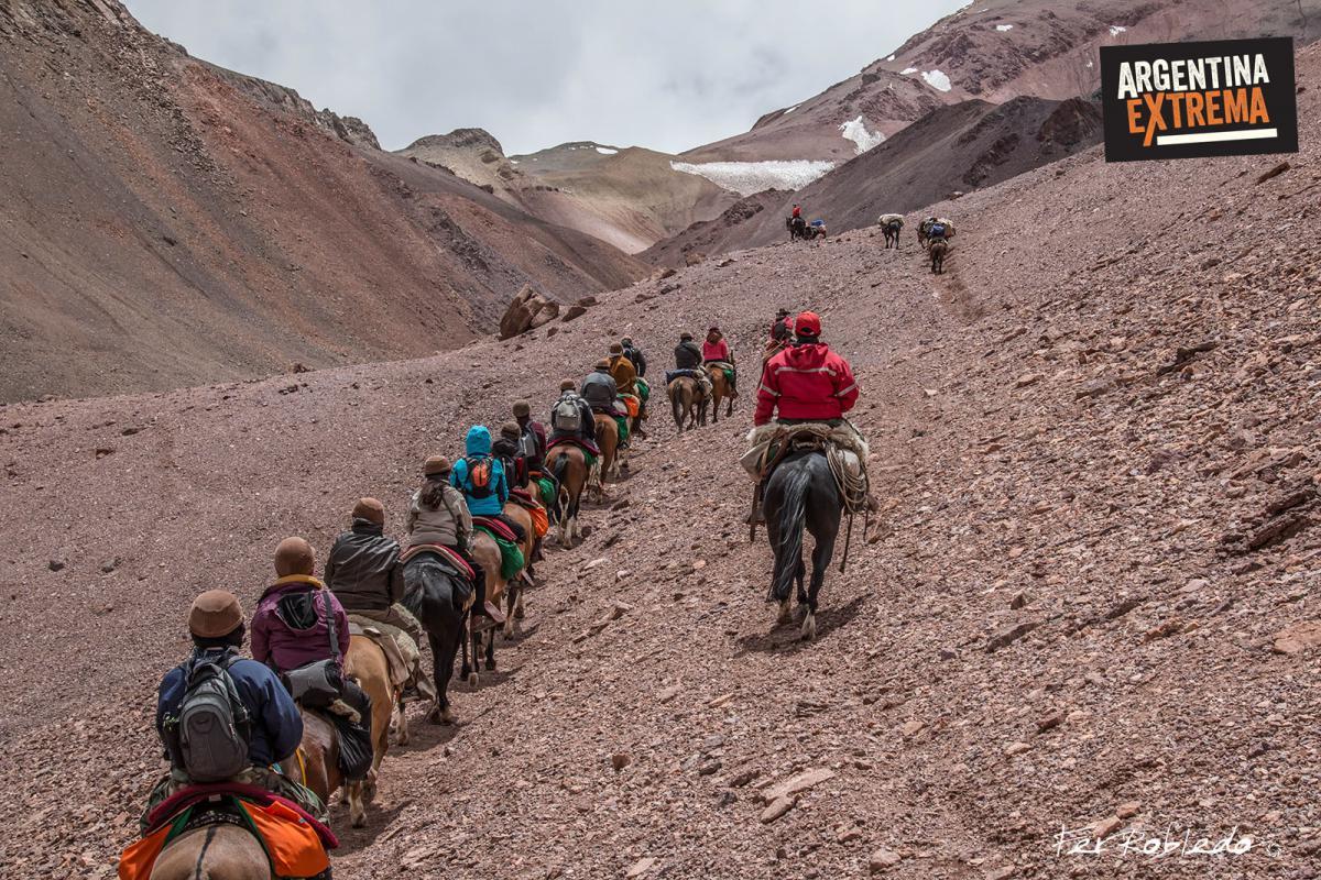 Caballos, mulas y jinetes enfrentan el sueño del General San Martin - Cruzar los Andes