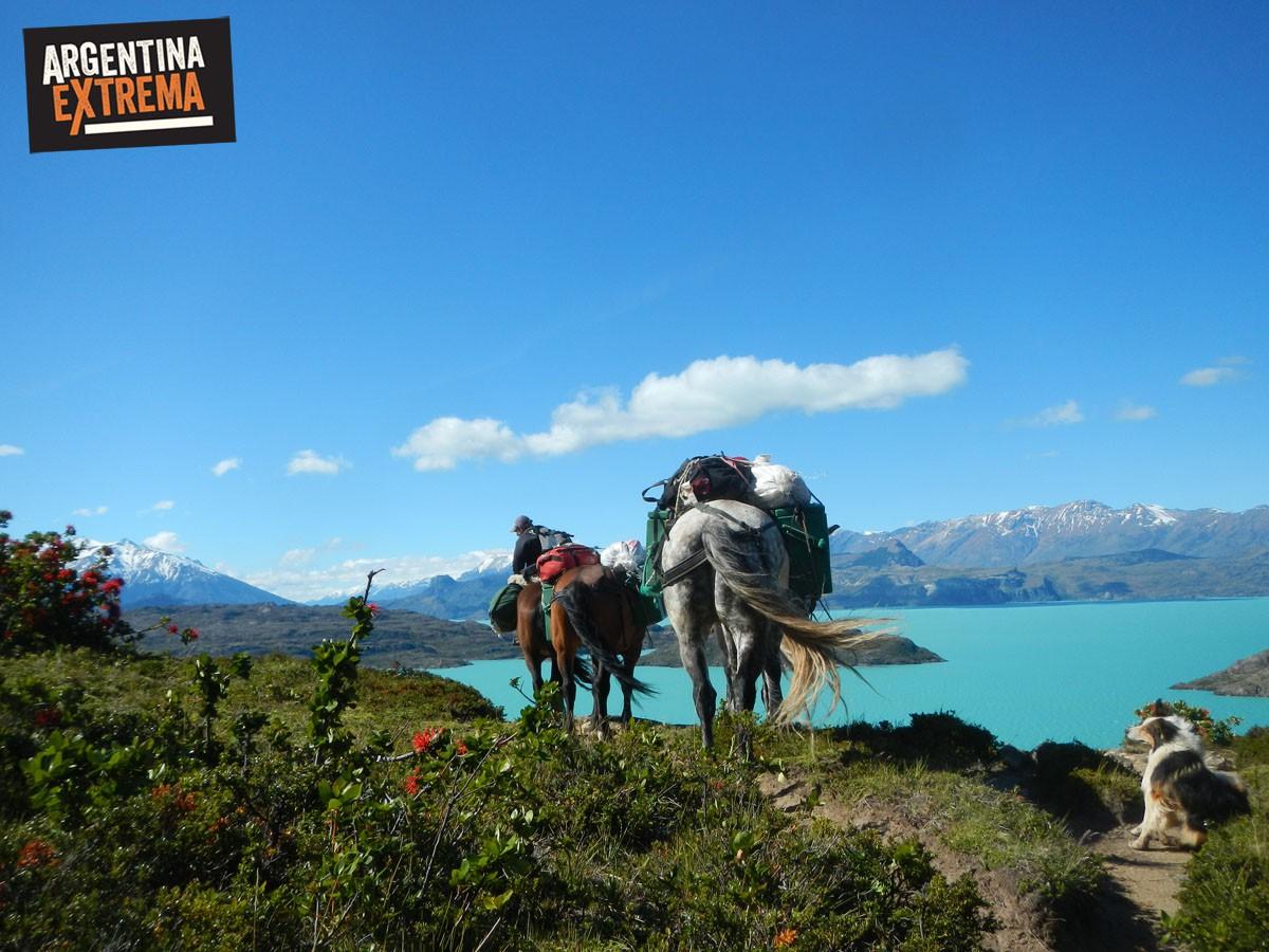 caballos bordeando el Lago San Martin