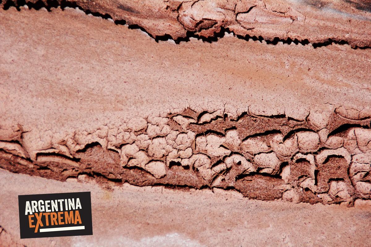fin de semana largo 17 de agosto talampaya y valle de la luna362