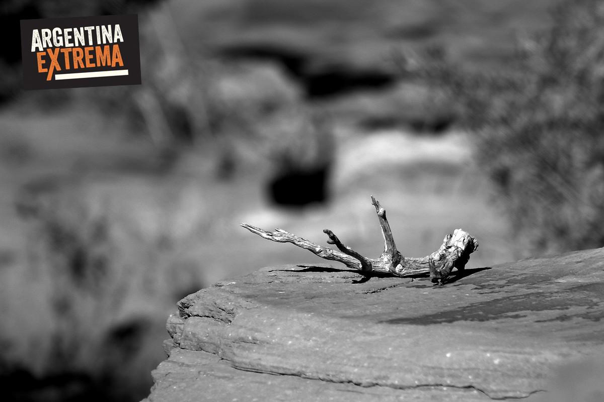 fin de semana largo 17 de agosto talampaya y valle de la luna805