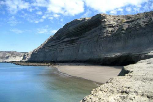 fotosafari avistajes de ballenas peninsula valdes puerto madryn 1