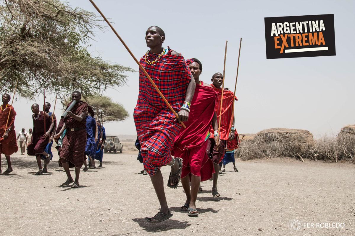 fotosafari serengeti ngorongoro manyara africa 824