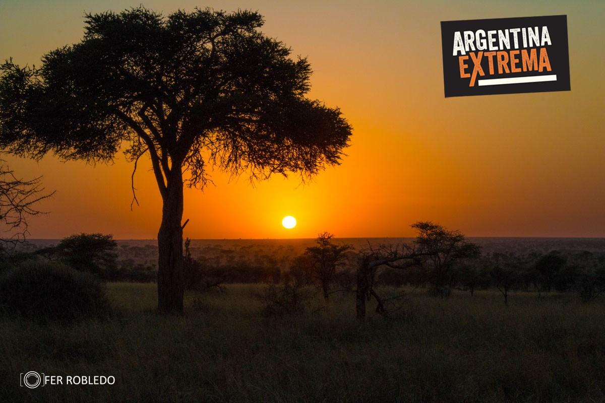 fotosafari serengeti ngorongoro manyara africa 992