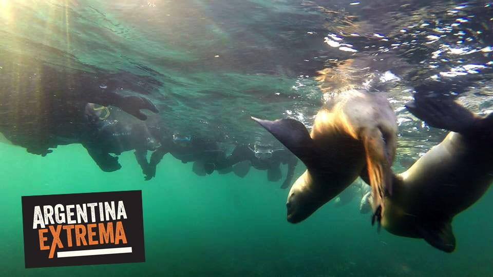 fotosafari y aventura en puerto madryn y peninsula valdes492
