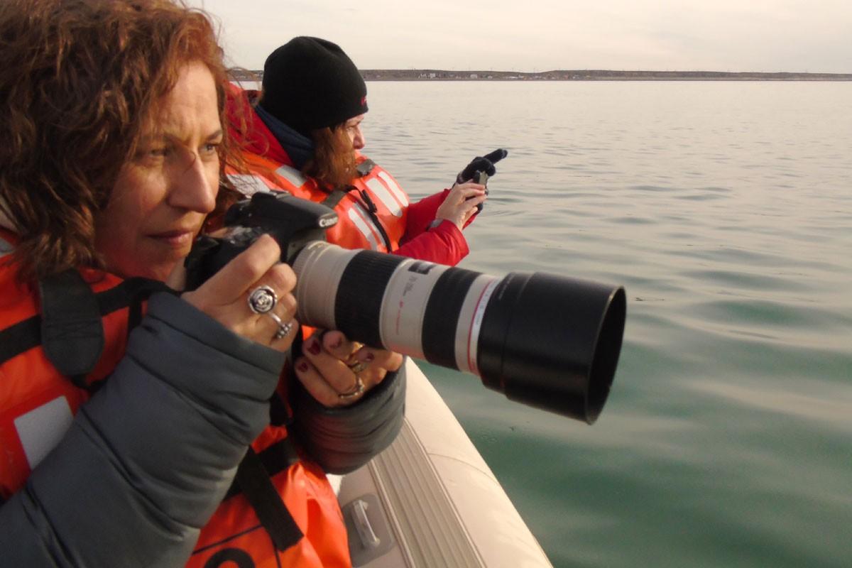 fotosafari y aventura en puerto madryn y peninsula valdes912