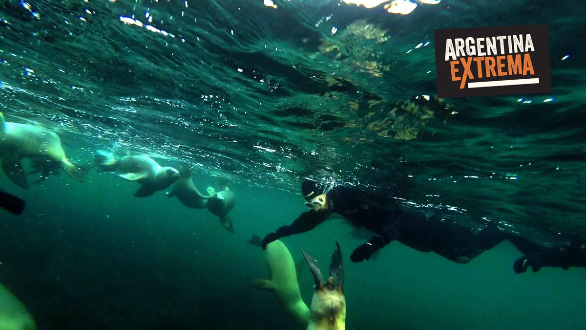 fotosafari y aventura en puerto madryn y peninsula valdes983