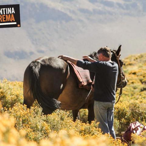 Cabalgata de 4 días por la Cordillera de los Andes - Las Loicas, Mendoza Sur