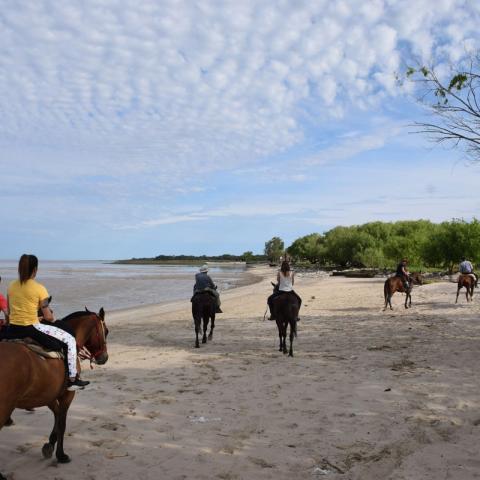Cabalgata Pampeana - Punta Indio, Bahia San Borombón - Buenos Aires