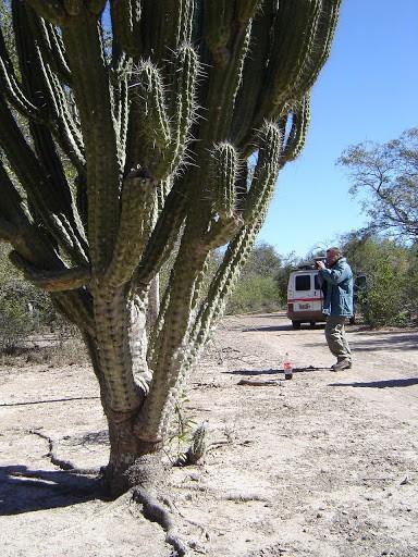 Overland explorando el Chaco y Formosa