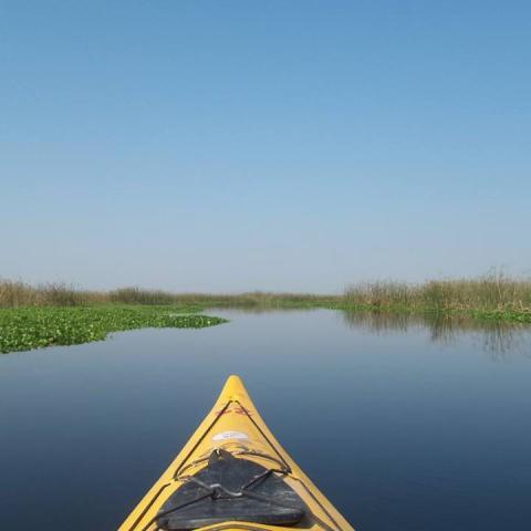Kayaking Viviendo los Esteros del Iberá - Kayak de Travesía - Corrientes