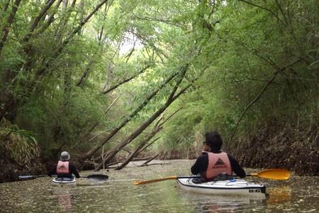 Taller de Iniciación al Kayaking de Travesía