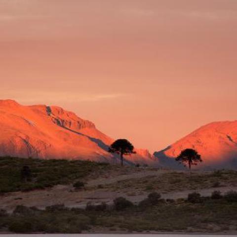 Trekking al Límite de los Andes visitando comunidades Mapuches - Caviahue y Copahue
