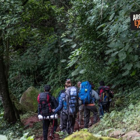 Trekking de la Selva a la Puna - Calilegua - Tilcara - Jujuy