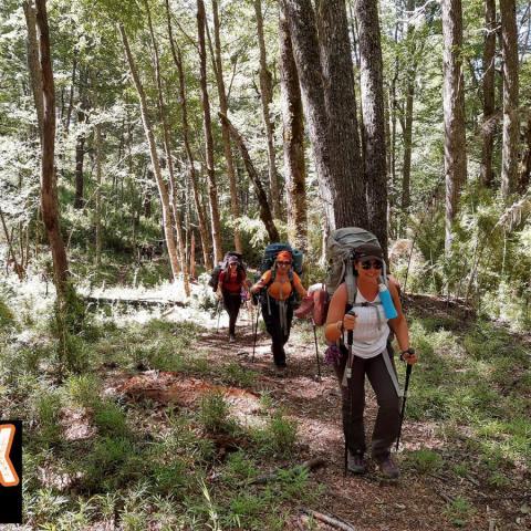 Trekking Hua Hum - Chachin - Termas de Queñi - Cerro Acol - San Martin de los Andes - PN Lanin