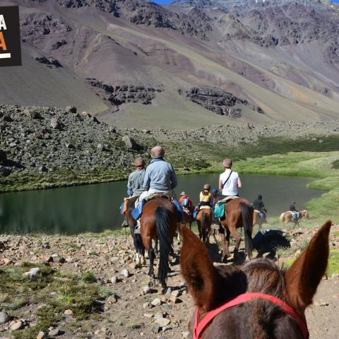Horse riding to the Andes Survivor Site - Uruguayan Air Force Flight 571  - 1969-Dec-31 23 de October!