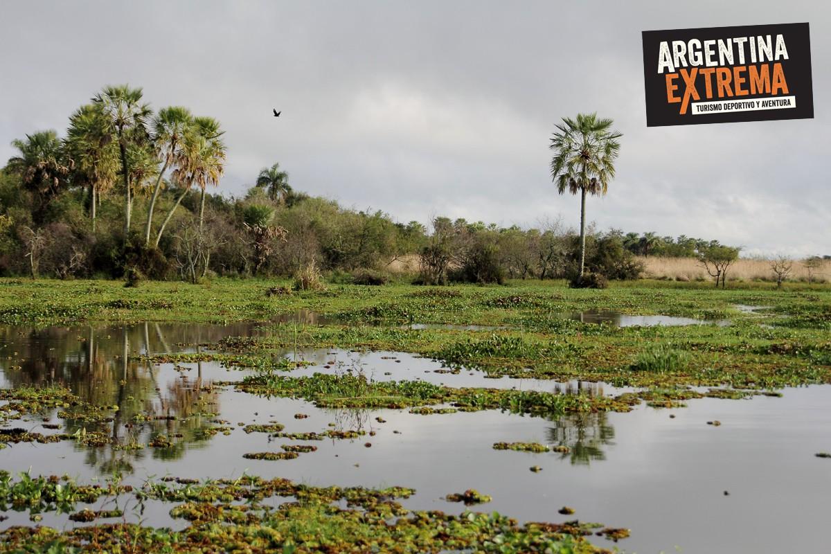 kayaking de travesia por los esteros del ibera994