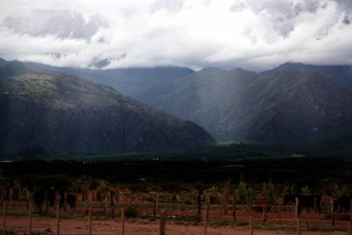 recorriendo valles calchaquies 003