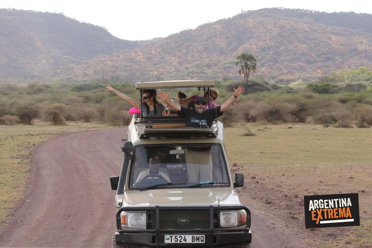 safari serenguetti ngorongoro manyara 001