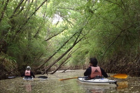 taller iniciacion kayaking de travesia 01
