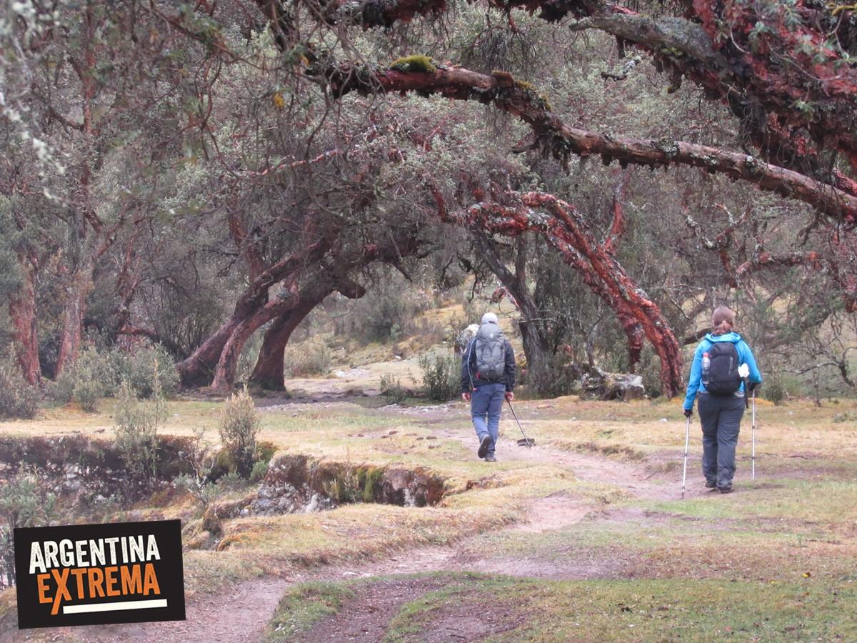 trekking cordillera blanca peru llanganuco santa cruz 505