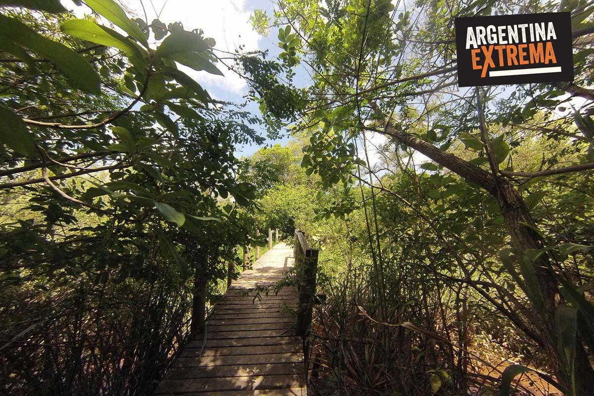 trekking delta tigre aventura paseo 01