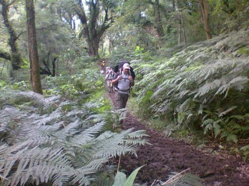 trekking yungas a valles calchaquies salta 01