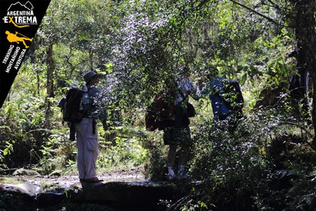 trekking yungas a valles calchaquies salta 07